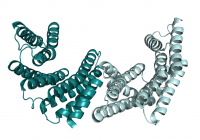 Laboratory of Structural Biology of Signaling Proteins